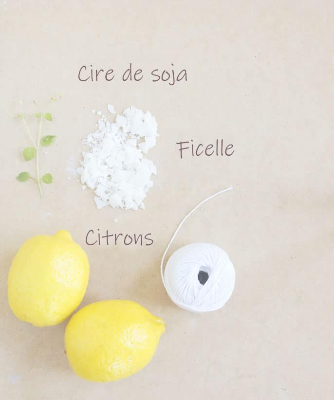 ingredient-bougie-anti-moustique-diy