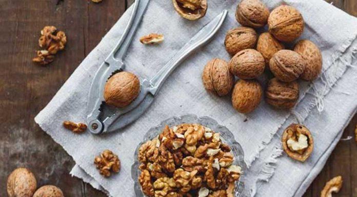 manger-noix-alimentation