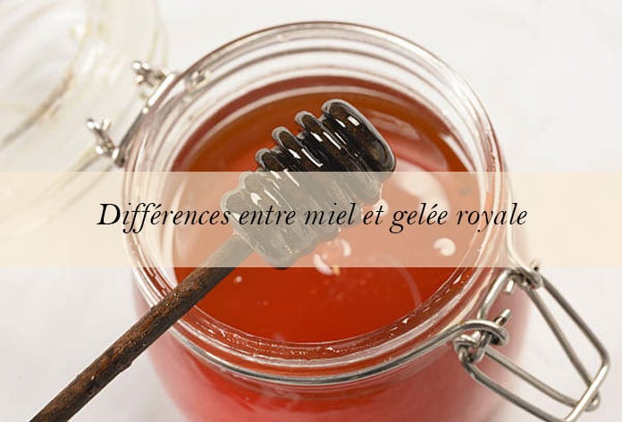 difference-miel-gelee-royale